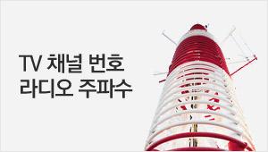 TV채널번호 라디오 주파수